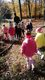 Galeria Słoneczka w lesie